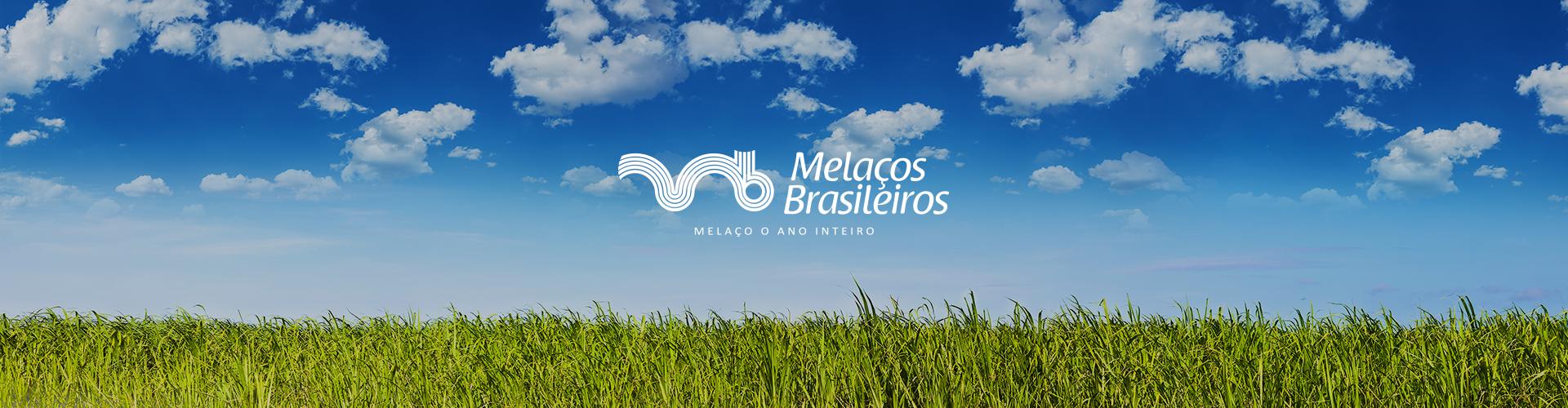 Banner-Melacos-2019-001