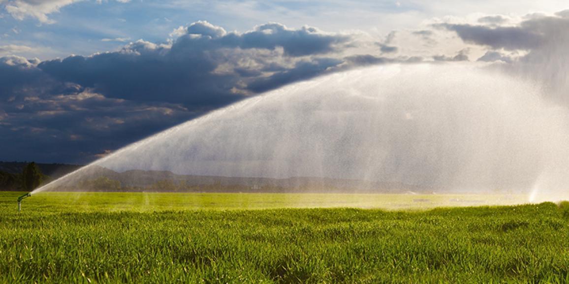 Agricultores também devem se adequar ao racionamento de água