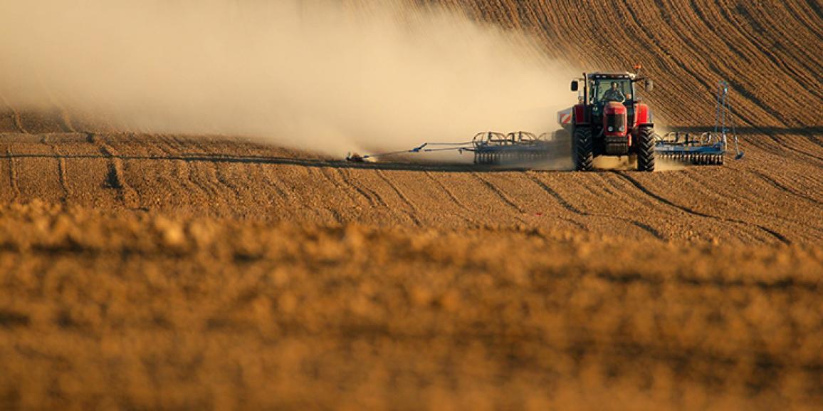Crise política brasileira salvou agricultura, diz consultor