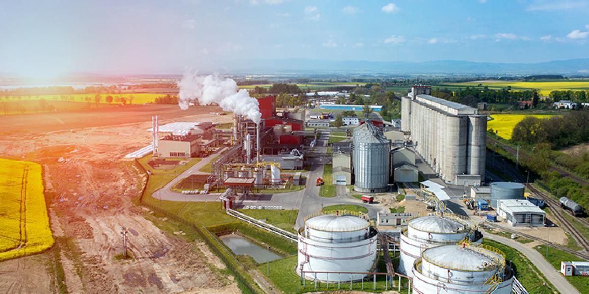 África é crucial para o Brasil exercer liderança em biocombustíveis, aponta estudo.
