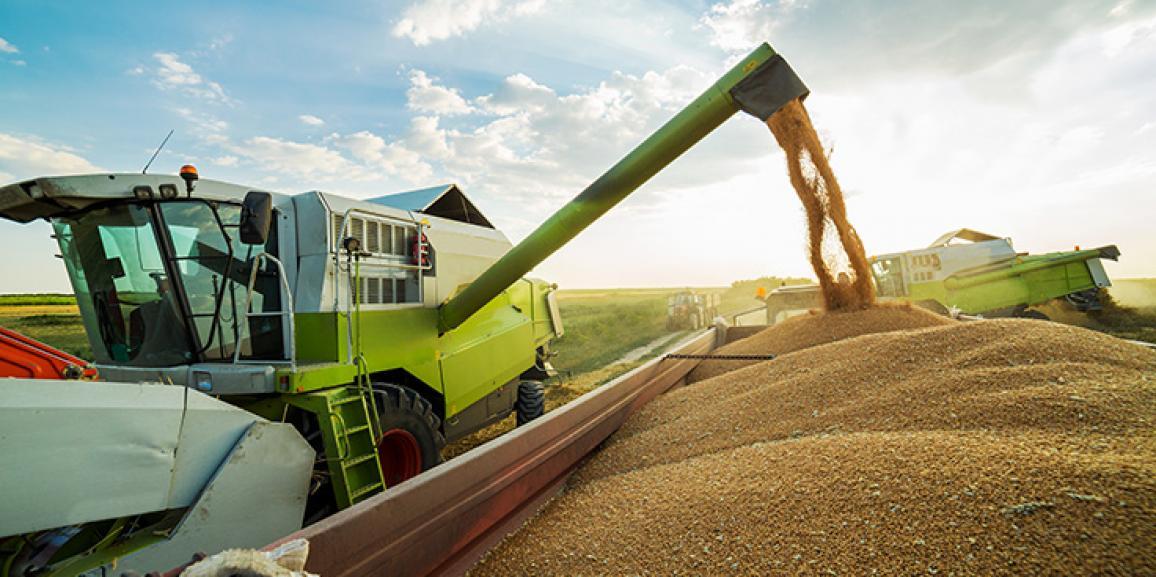 Safra de grãos pode ter recorde de 210,95 mi de toneladas